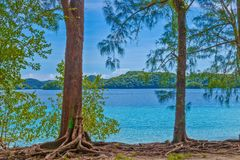 Island trip to turquoise waters at Palau. During daytime royalty free stock image