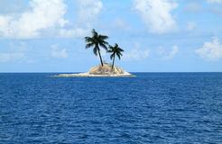 Island with two palm Royalty Free Stock Photo