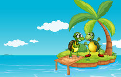 An island with two turtles Stock Images