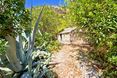 Island of Vis jungle path in Stinva bay Stock Photography