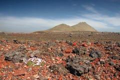 Island-vulkanische Wüste Stockfoto