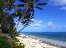 Island Walk. Girl walking under massive palm trees stock image