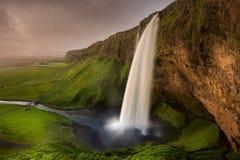 Island-Wasserfall Seljalandsfoss Stockbild