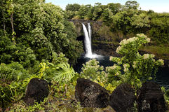 Island Waterfall. Taken on the big island of Hawaii royalty free stock photography