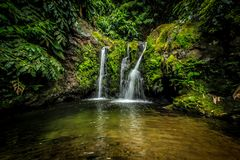 Island Waterfall. Hidden waterfall in deep forest of the azorean island Royalty Free Stock Photo