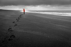 Islandic kust Arkivfoto