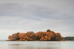 Islands in the autumn Royalty Free Stock Image