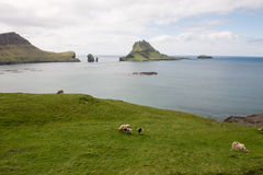 The islands Gasholmur and Tindholmur and  Mykines on the Faroe I Royalty Free Stock Images