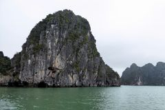 Islands of ha long bay. With some green plants growing on it in Vietnam Royalty Free Stock Photo