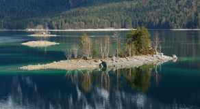 Islands In Eibsee Royalty Free Stock Photo