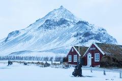 Islandzcy murawa domy w Arnarstapi zdjęcia stock
