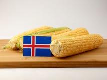 Islandzka flaga na drewnianym panelu z kukurudzą odizolowywającą na białym b obrazy stock