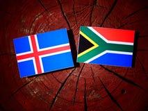 Islandzka flaga z południe - afrykanin flaga na drzewnym fiszorku odizolowywającym Obrazy Stock