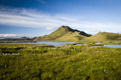 Islandzka natura Fotografia Royalty Free