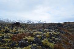 Islandzki krajobraz śnieg nakrywał górę i lawowego pole Fotografia Stock
