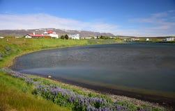 Islandzki krajobraz miasteczko Skagaströnd, z oceanem w przodzie i górami w tle Półwysep Skagi obrazy stock