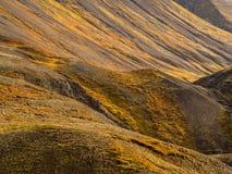Islandzki Niewygładzony teren zdjęcie stock