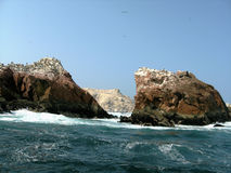 Islas Ballestas Photo stock