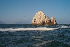 Islas Ballestas, isole del guano fuori dal Perù immagine stock libera da diritti