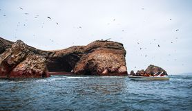 Islas Ballestas, Paracas, październik 15, 2017: Krajobraz skała Grupa turyści jedzie na wycieczkowej łodzi Obraz Stock