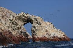 Islas Ballestas Stock Photography