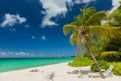 Islas Caimán Fotos de archivo libres de regalías