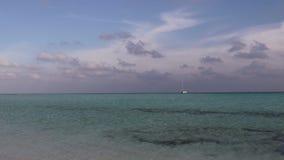 Islas de los mares tropicales metrajes