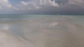 Islas de los mares tropicales almacen de video