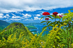 Islas de Seychelles - Mahe fotos de archivo libres de regalías