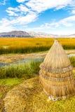 Islas flotantes en el lago Titicaca Puno, Perú, Suramérica, cubierta con paja a casa. Raíz densa que las plantas entretejen Imágenes de archivo libres de regalías
