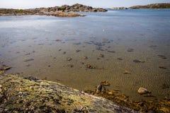 Islas preciosas con la naturaleza hermosa - Goteburgo, Suecia imagen de archivo libre de regalías