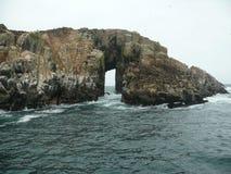 IslasPalomino, skyddsremsor och seabirds, Callao, Peru Royaltyfria Foton