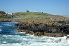 Isle of May. The Isle of May in Scotland Royalty Free Stock Images