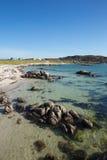Isle of Mull Scotland beautiful Scottish beach at Fidden near Iona Royalty Free Stock Photo