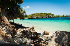 Isle of Pines. A beautiful beach in the Isle of Pines, New Caledonia stock photo