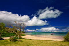 Isle of Pines. A beautiful beach at Vao, Isle of Pines, New Caledonia royalty free stock photos