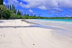 Isle of Pines, New Caledonia Stock Photography