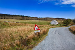Isle of Skye Landscape. Lamb notice sign Stock Photos