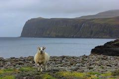 Isle of Skye, Scotland Stock Image