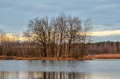 Winter morning landscape. Royalty Free Stock Image