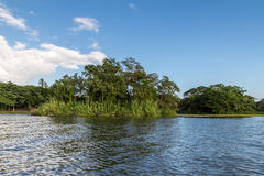 Isletas,从Nicaragua湖的小的海岛 免版税图库摄影