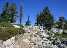 Islip Ridge Trail. Trees and rocks on a mountain, California Stock Photos
