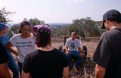 ISM ställa upp som frivillig i en olivgrön dunge, Palestina arkivfoton