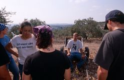 ISM volunteers in an olive grove, Palestine stock photos