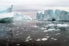 Ismiljö för arktiskt hav av västkusten av Grönland fotografering för bildbyråer