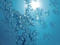Ismodell på vinterexponeringsglas Arkivbild