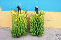 Isnos - Колумбия стоковые изображения