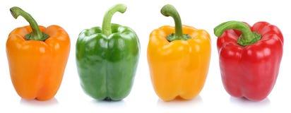 Iso овощей взгляда со стороны собрания паприки болгарского перца в ряд Стоковая Фотография