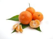 Isoalted tangerine obraz royalty free