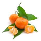 Isoalted tangerine Royalty Free Stock Photo